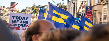 Equality Flags